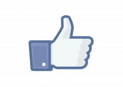 facebook vector.jpg