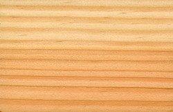 Douglas ~ Oregon pine.jpg