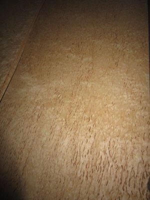 W113-1 Berken Wortel 76x28cm 12,50euro.jpg