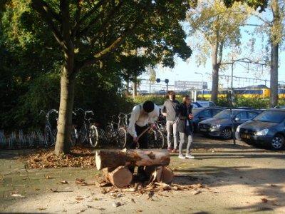 afb2 wie staat daar nu met die boomstronk te spelen.jpg